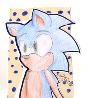 Sonic the hedgehog by Hollsterweelskitty
