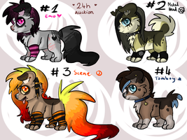 24H AUCTION- Subculture themed puppies ALL TAKEN by CoughingAdopts