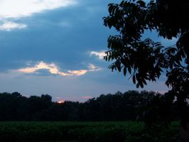 Sunset over the Pecans by Fully-Stocked