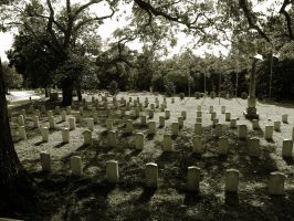 Edit:Cemetery by ElenaSaleeby