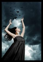 Flight of Crows by saralclark
