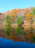 Autumn Reflection by WilliamJCovello