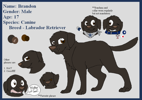Brandon [OC Ref] by BanditKat