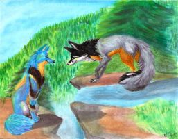 Two Foxes by Joava