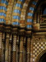 Natural History Museum II by izzybizy