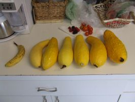 Yellow Squash in a row 1 by dtf-stock