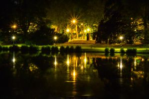 Tenreuken by night 2 by pers-photo