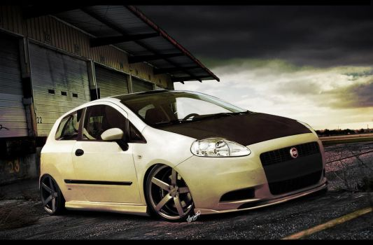 Fiat Punto by FabricioProDesign