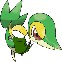 Snivy suit 2 by toamac