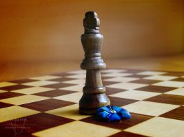 Checkmate by Photografisk