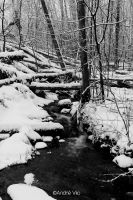 Winter stream by Andre-Cosmo