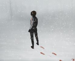 The Winter Soldier by Zoubstance