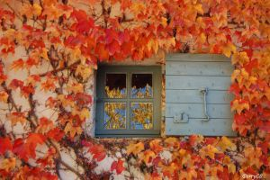 Colori d'autunno by lukeperry