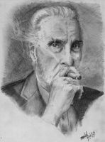 In Memory of Christopher Lee by dmbarnham