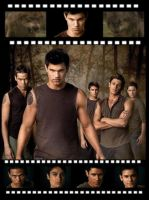 Wolf Pack Filmstrip by Mistify24