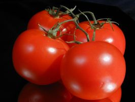 tomatoes by roger1440