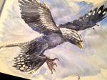 Flying Microraptor by dustdevil