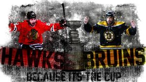 Because It's the Cup - Blackhawks vs Bruins by chicagosportsown