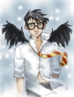 Harry Potter with wings by usagistu