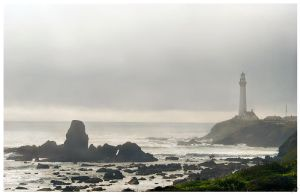 Pigeon Point in the Mist by shell4art