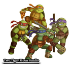 Turtle Power by TwoTigerMoon