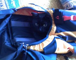 Rucksack by Woolfred