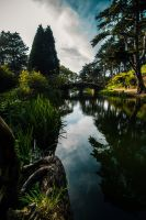 Golden Gate Park by 5isalive