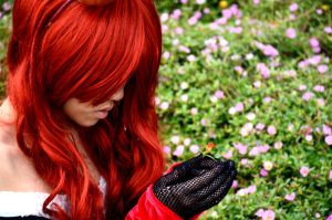 The only red flower... by cookiechle726