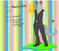Aaron Application for Eeveelution High by RadvumTal