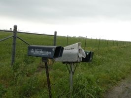 Mailboxes by kwuus
