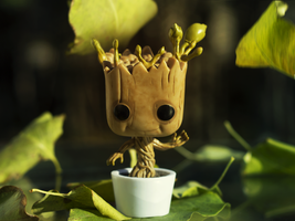 Groot by nottimmas