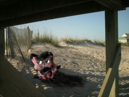 Vinnie under the boardwalk by Foxdraft
