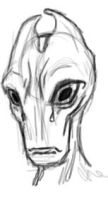 Salarian Doodle by Nyhtmare