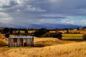 The Wairau Valley by carterr