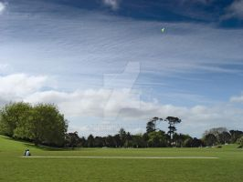 Playing With Kite by kulesh