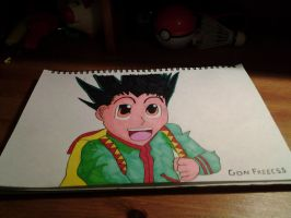 Hunter x Hunter: Gon Freecss Fanart by AxelRaptr