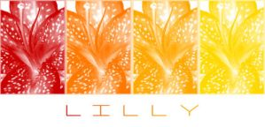Lilly by MStout