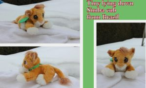 Tiny lying down Simba cub from Brazil by Laurel-Lion
