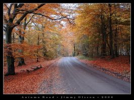 Autumn Road by J-i-m-p-a