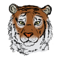 Tiger by PawesomeSauce