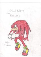 Knuckles the Echidna by Leonesaurus