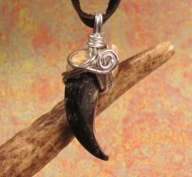 Alpha Wolf Wire Wrapped Wolf Claw Pendant by MorRokko