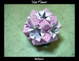 Star Flower by wolbashi