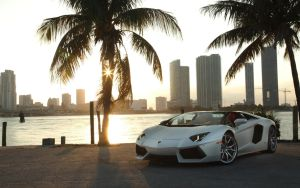 2013 Lamborghini Aventador LP 700-4 Roadster by ThexRealxBanks