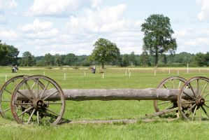 Cross Country Carriage Log Stock by LuDa-Stock