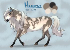 Huana Reference by IsharaHeart