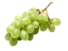 Grapes digital painting by Nayawinden