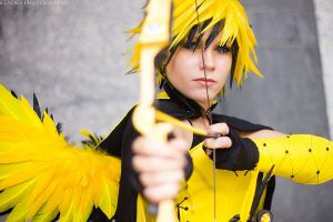 Animazement 2013 - ZapDos by stillreflection
