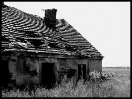 Old house II by Necrotrup