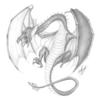 Wyvern by InTheWolfEye